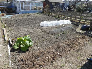 Allotment: April (Year 1)