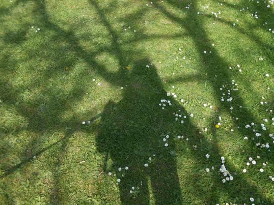 HerShadow