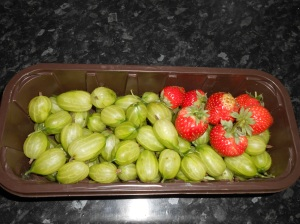 Gooseberries&Strawberries