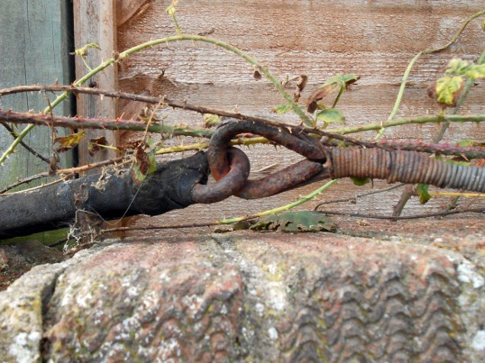Iron Hook & Ring (Fencing)
