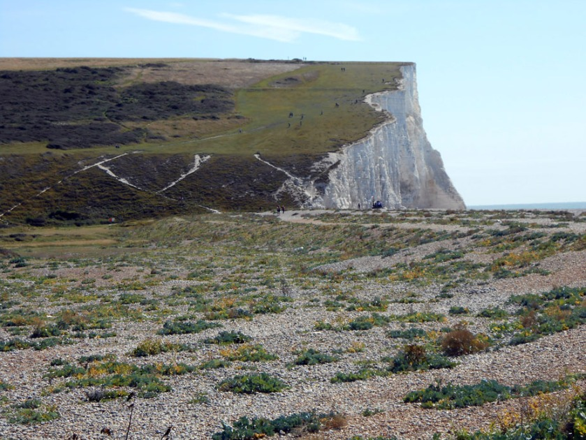 Cuckmere Haven Clifftops