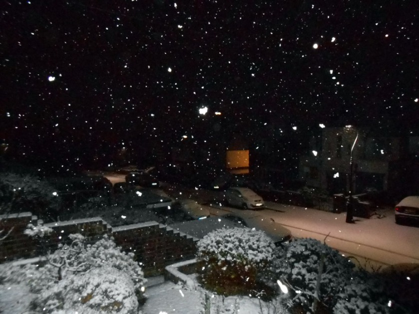 January snowfall (nighttime)